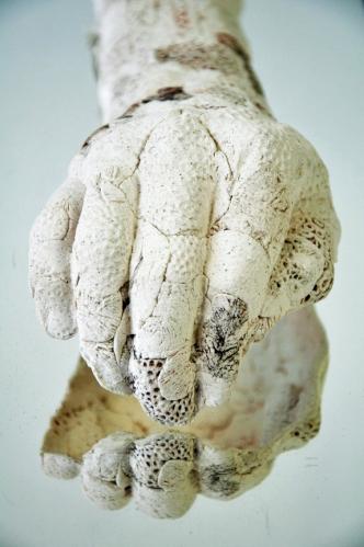 Sculpture d'Amélie Pomerleau